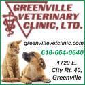 greenville vet