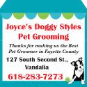 Joyces-Doggy-Styles-TY-Web-Ad